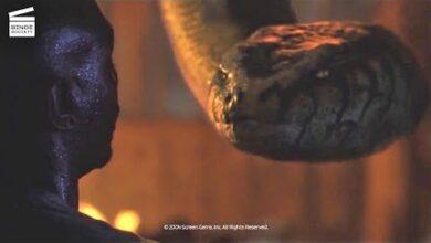 Anacondas A La Poursuite De Lorchidee De Sang Devore Vivant Clip Hd Ohrdiip7Zt0 Image