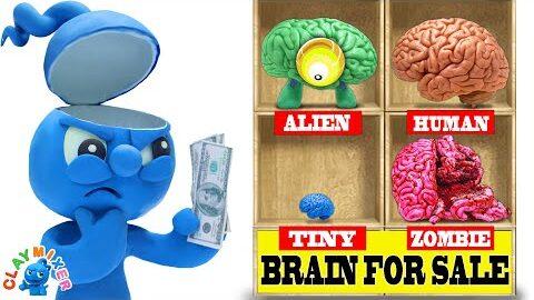 Clay Mixer French Blue Manque Un Cerveau