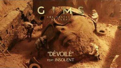 Gims Devoile Feat Inso Le Veritable Audio Officiel Zsaxrsz Mic Image