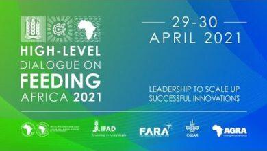 High Level Dialogue On Feeding Africa English Ardji T8Ibe Image
