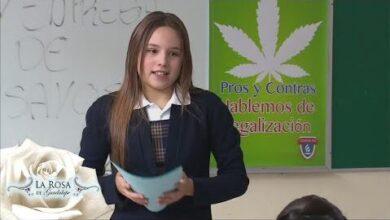 La Rosa De Guadalupe 2021 La Familia Del Ano Parte 1 Twh4Gghayq4 Image