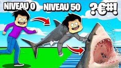 Les Meilleures Evolutions Danimaux Dans Animal Transform Le Plus Grand Requin 60Dqgjobsp4 Image