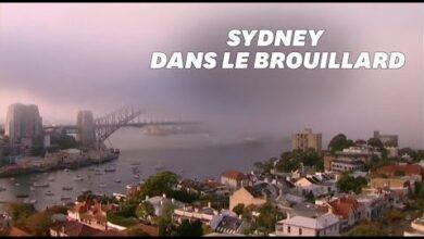 Sydney Prise Dans La Fumee De Brulis Pendant Plusieurs Jours 9Yhtoicmao4 Image