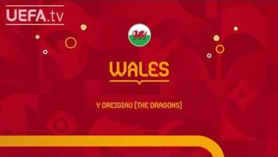 Bale James Page Wales Meet The Team Euro 2020 7Tad0R4Sdzw Image