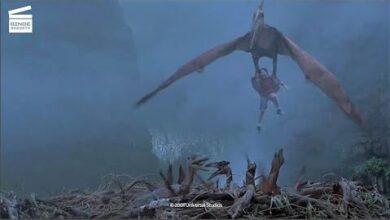 Jurassic Park 3 Une Cage Doiseaux Clip Hd Fqw1Qtbjfae Image