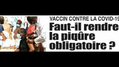 Actualites Les Moutons Intouchables Faut Il Rendre Le Piqure Obligatoire O5J7Upraka4 Image