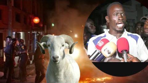Affrontement Entre Force De Lordre Et Vendeurs De Mouton A Liberte 6 Les Eleveurs Sexplique Asvhpwgz7B4 Image