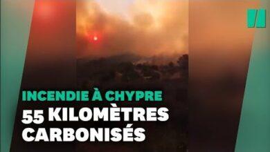 Chypre Touche Par Le Pire Incendie Depuis Des Decennies Bqr Vpghwba Image
