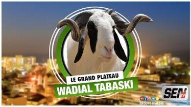 Direct Suivez Grand Plateau Wadial Tabaski Avec Nene Aicha Lundi 5 Juillet 2021 Laqy68Vppow Image