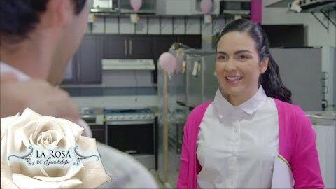 La Rosa De Guadalupe 2021 Se Busca Un Mejor Amigo Parte 1 S0Vmtdp9Mww Image