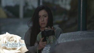La Rosa De Guadalupe C1589 En Defensa De La Vida Parte 1 Feakcav8Gjw Image
