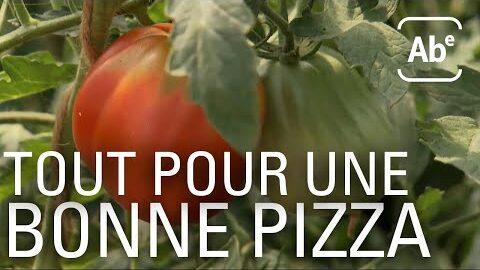 Le Bonheur Est Dans La Tomate Abe Rts 480Zwqd94Bm Image