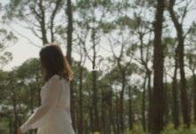 Nancy Ajram Yama Official Lyric Video 6Prpz21L Yg Image
