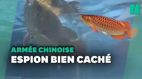 Pour Espionner Les Mers La Chine A Concu Ce Drone Poisson Ultra Realiste Lva 5Tymbby Image
