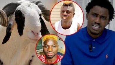 Wally Seck Offre Un Mouton De Tabaski A Pawlish Mbaye Et Decide Pour Adamo Wydyefa9Yl8 Image