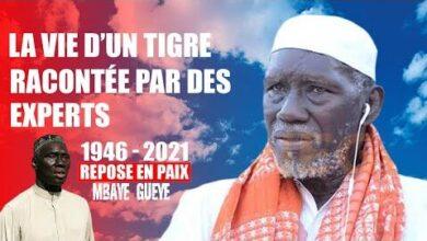 Hommage A Mbaye Gueye Le Premier Tigre De Fass Avec Le Monde De La Lutte Bax9D6T03Qs Image