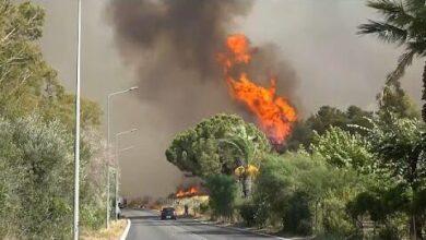 Incendios Na Europa Ja Morreram 6 Pessoas Na Turquia Lnfcteufvxo Image