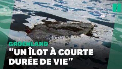 Lile La Plus Au Nord De La Planete Decouverte Par Hasard Au Groenland Ces Scientifiques Y Croient 1Fvnpzco Ig Image