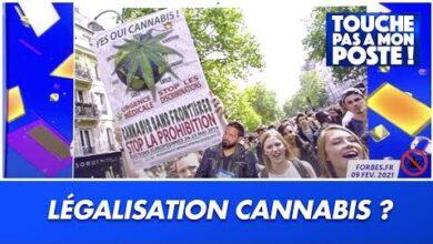 Selon Le Depute Francois Michel Lambert Le Cannabis Sera Legalise En France Dici 2 A 3 Ans Zgrh4Xzblsa Image