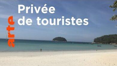 Thailande Phuket Malade Du Tourisme Arte 3X8Jlr60U 8 Image