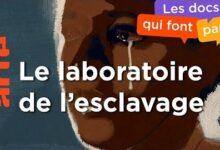 1375 1620 Pour Tout Lor Du Monde Les Routes De Lesclavage 2 4 Arte Vklyulilmzq Image