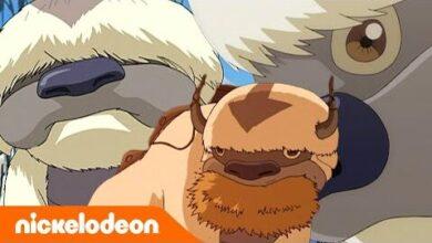 Avatar Le Dernier Maitre De Lair Appa Le Bison Volant Nickelodeon France Mj6B5Elxdtc Image