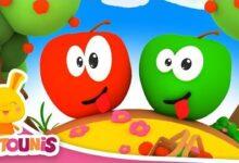 Comptines Des Fruits Pomme De Reinette Pomme Dapi Fcfdpojwsmy Image