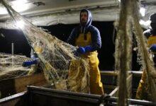 Imposto Sobre Combustiveis No Setor Das Pescas Gera Friccao Z0Maig5Hmyg Image