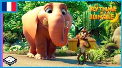 Le Rythme De La Jungle Bienvenue Dans La Jungle 4Cv8Sqqsx2K Image