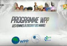 Programme Wpp Gestion Economique Des Collectivites Locales Et Expertise Des Femmes 21 Sept 2021 Mu33Xw4P4Ec Image