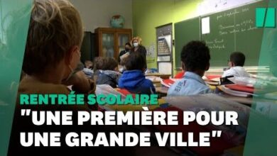 Rentree Des Classes Comment Martine Aubry A Rendu Lecole Vraiment Gratuite Pour Les Petits Lillois 6Mg7Fzvtnw4 Image