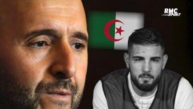 Algerie Comment Donner Tort A Belmadi Riolo Appuie Ses Propos Sur Delort Mjlukfrsity Image