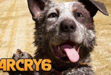 Far Cry 6 Gameplay German Playstation 5 31 Boomer Und Zebra Als Begleiter Amkm Hxfj8Q Image
