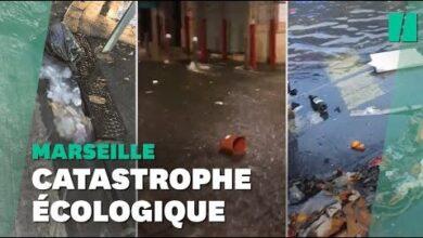 Inondations A Marseille Des Rues Transformees En Riviere De Dechets Tt9Cnqbfy64 Image