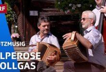 Schwyzerorgeli Quartett Alperose Vollgas Potzmusig Srf Musik Vuwcwmp4Qbw Image