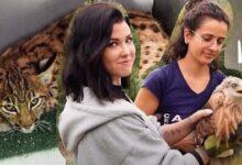 Une Journee Avec Les Sauveurs Des Animaux Sauvages Lynx Rapaces Chats Forestiers Nsfn4Bc7Ck Image